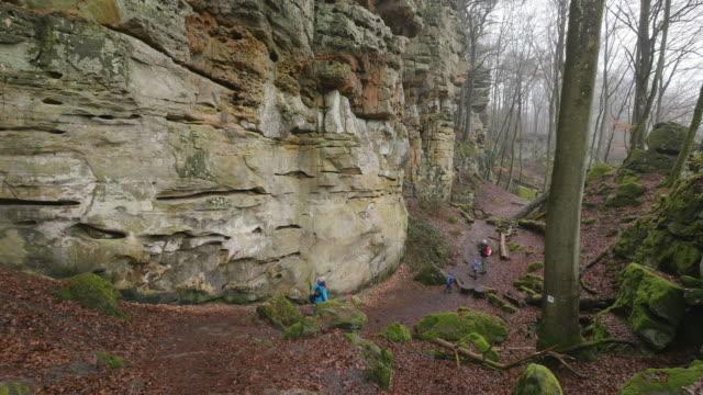 the devil's canyon at ferschweiler plateau, eifel, rhineland-palatinate, rheinland-pfalz germany - rheinland pfalz stock-videos und b-roll-filmmaterial