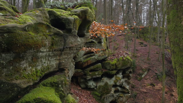 vídeos de stock, filmes e b-roll de the devil's canyon at ferschweiler plateau, eifel, rhineland-palatinate, rheinland-pfalz germany - só uma mulher idosa