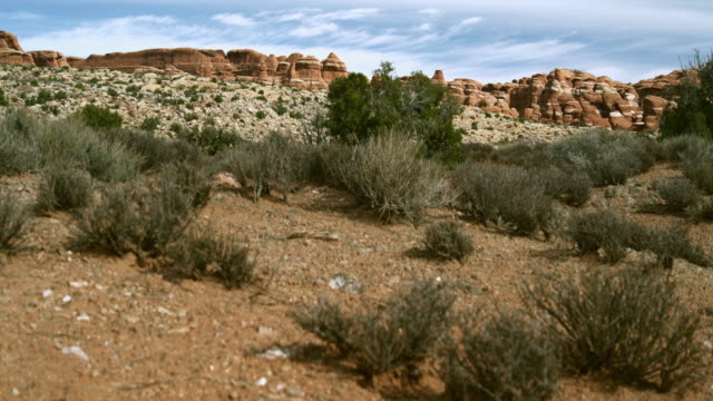 the devils garden, arches national park, utah - mesa stock videos and b-roll footage