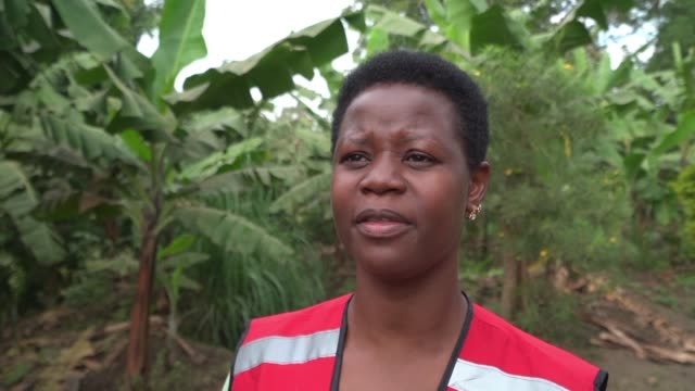 the director of health and social services for red cross uganda says that one of the biggest challenges faced in controlling the spread of ebola from... - porous stock videos & royalty-free footage