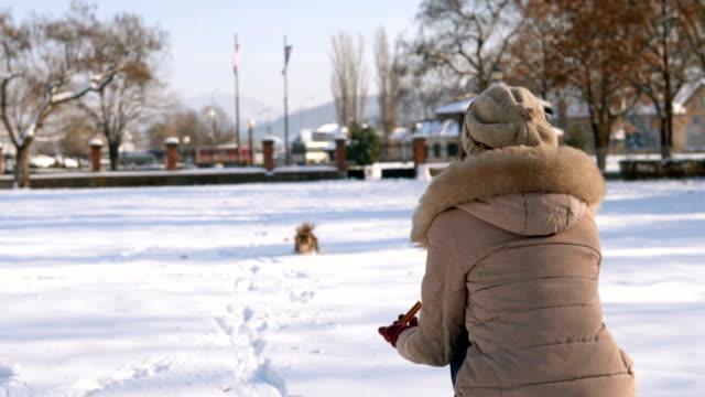 der hund läuft auf die frau zu - haustierbesitzer stock-videos und b-roll-filmmaterial