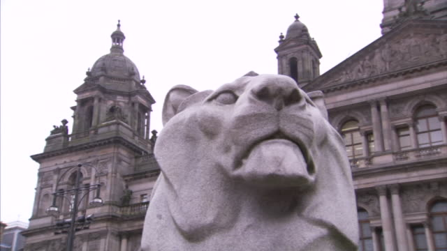 the domes of the glasgow city chambers tower behind a statue of a lion. - cat family stock videos & royalty-free footage