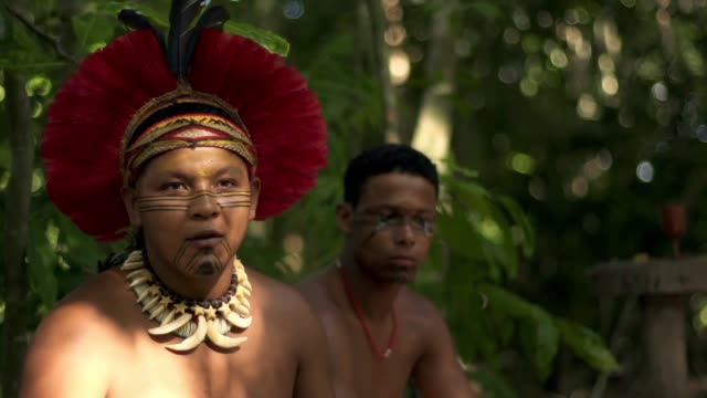 vídeos de stock, filmes e b-roll de the dreamcatcher is part of the pataxó culture an amerindian tribe in the brazilian state of bahia it separates the good from the bad dreams and only... - amazonas state brazil