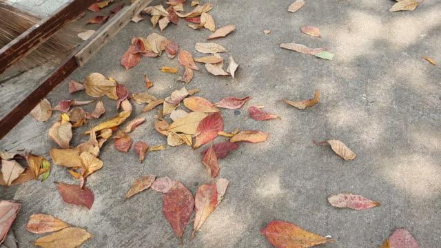 vídeos y material grabado en eventos de stock de las hojas secas fueron barridas - barrer