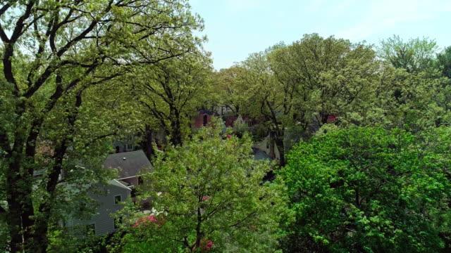 vídeos de stock, filmes e b-roll de a vista aérea de zangão do bairro residencial no dia ensolarado de primavera. pelham manor, condado de westchester. - localidade pequena
