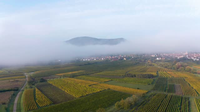 vidéos et rushes de the drone rises through low fog that blankets the plain. the vosges mountains are gradually becoming visible. - saison