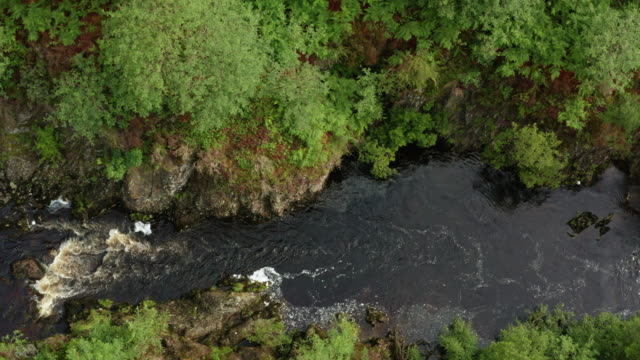 the drone view of fast moving water in a small scottish river in rural dumfries and galloway, south west scotland - johnfscott stock videos & royalty-free footage