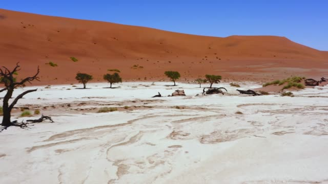 the drought has only just become - namibia stock videos & royalty-free footage