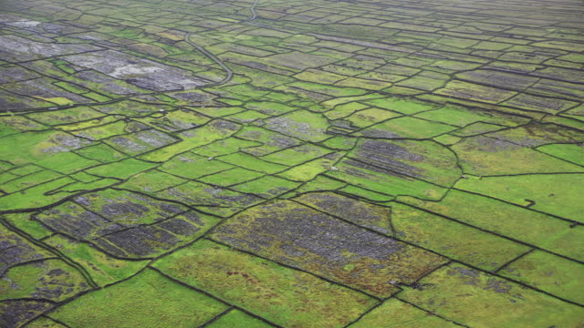 the dry stone walls of inishmore - stone object stock videos & royalty-free footage