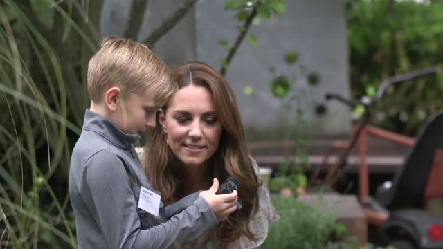 the duchess of cambridge has been named as the new patron of the royal photographic society as she joined youngsters taking part in a workshop run by... - photography stock videos & royalty-free footage