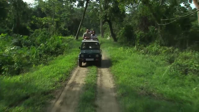 the duke and duchess of cambridge have been on safari this morning in india's kaziranga national parkthe park is a world heritage site and it's a... - safari india stock videos and b-roll footage