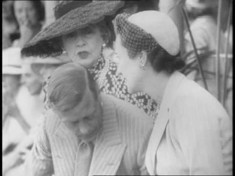 the duke and duchess of windsor and bessie merryman gather in stands at dog show / montage of the duke brushing cairn terrier pookie smoking pipe... - bahamas stock videos & royalty-free footage