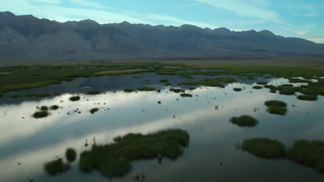 the eastern sierra nevada mountains hover over owens valley wetlands. - basin and range province stock videos and b-roll footage