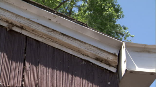 the eaves of a house reflect water. - eaves stock videos and b-roll footage