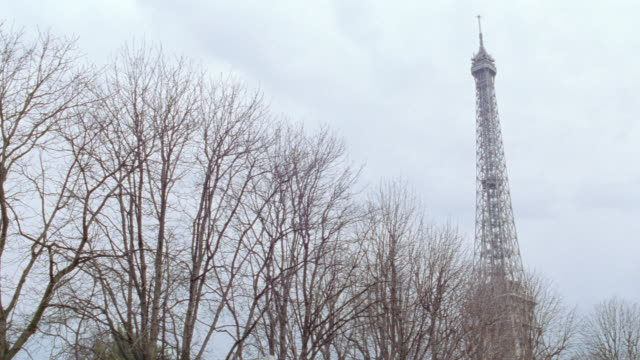 the eiffel tower overlooks a row of bare trees on a winter day in paris. - 2003 stock videos & royalty-free footage