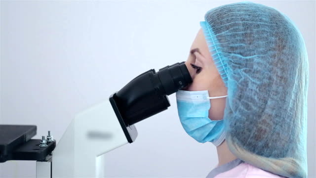 the embryologist prepares equipment for the artificial insemination procedure. - artificial insemination stock videos & royalty-free footage