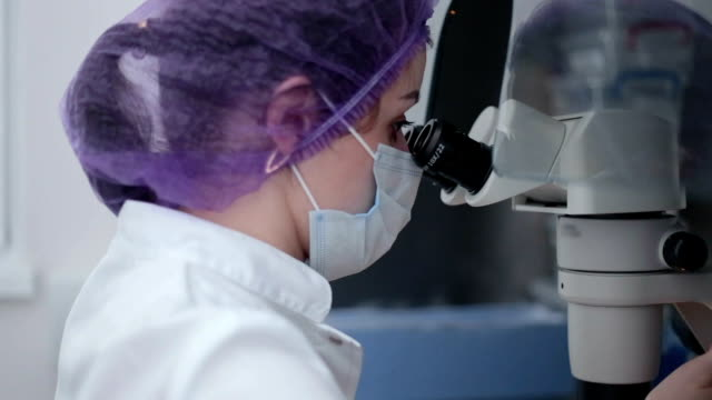 the embryologist works with human sperm. - human fertility stock videos & royalty-free footage