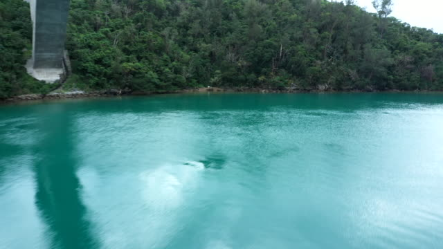 The emerald green ocean and nature
