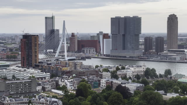 the erasmusbrug and modern architecture in rotterdam. - rotterdam stock videos and b-roll footage