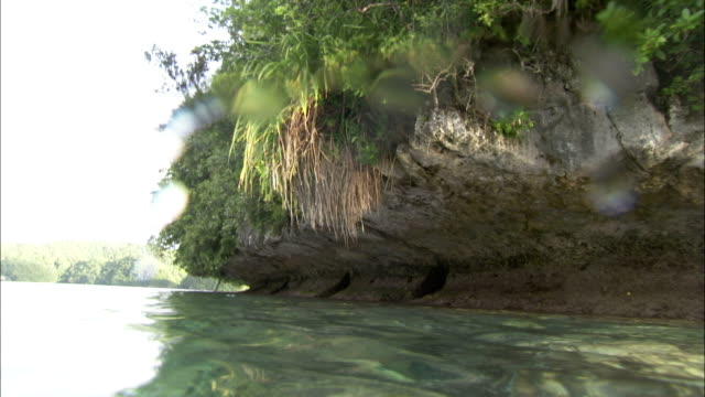The eroded bank of an island hangs over a coral reef in shallow water. Available in HD.