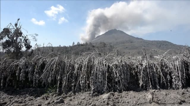 vídeos y material grabado en eventos de stock de the eruptions of mount sinabung in indonesia have forced thousands to flee their homes in karo and have covered the town in ash clean sinabung... - monte sinabung