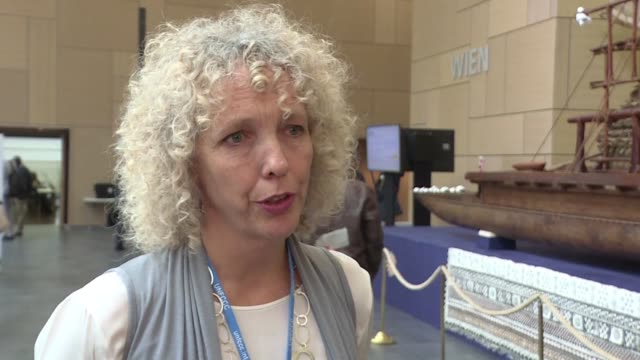 the executive director of greenpeace international jennifer morgan reacts to the cop23 opening ceremony and shares the organisation's hopes for the... - executive director stock videos & royalty-free footage