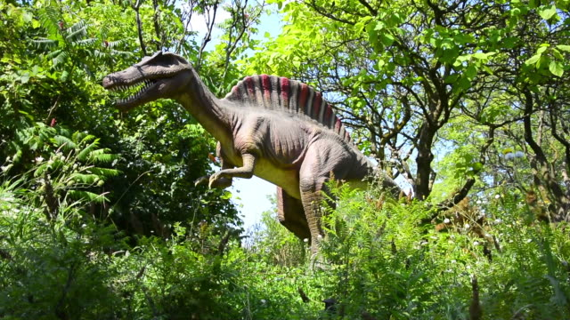 vídeos de stock, filmes e b-roll de the exhibition shows sights sounds and smells of dinosaurs with more than 40 lifesized animatronic dinosaurs they are set in a seven acre outdoor... - boca animal