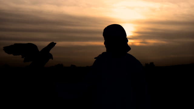 The falconer against sunset