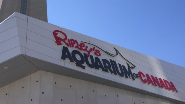 The famous aquarium is one of three aquariums owned and operated by Ripley Entertainment It is located in downtown Toronto just southeast of the CN...