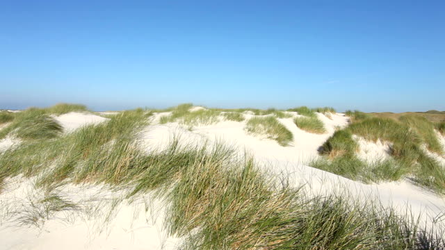 The famous dunes from Amrum