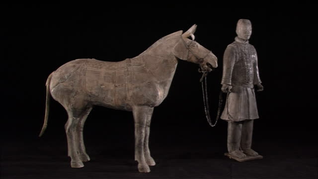 the figures of cavalryman and a horse - male likeness stock videos & royalty-free footage