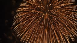 the fireworks in the night sky