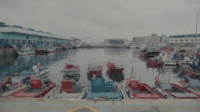 fishing Hafen von Vigo, Spanien, Galicien,