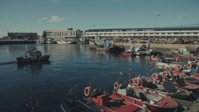 De vissershaven van Vigo, Galicia, Spanje