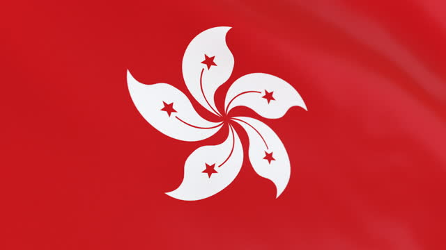 the flag of hong kong loop - hong kong flag stock videos & royalty-free footage