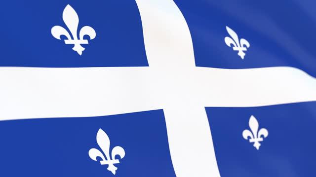 ケベックループの旗 - ケベックの旗点の映像素材/bロール