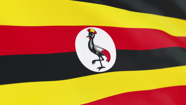 the flag of uganda loop - politics icon stock videos & royalty-free footage