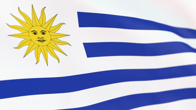 the flag of uruguay loop - uruguaian flag stock videos & royalty-free footage