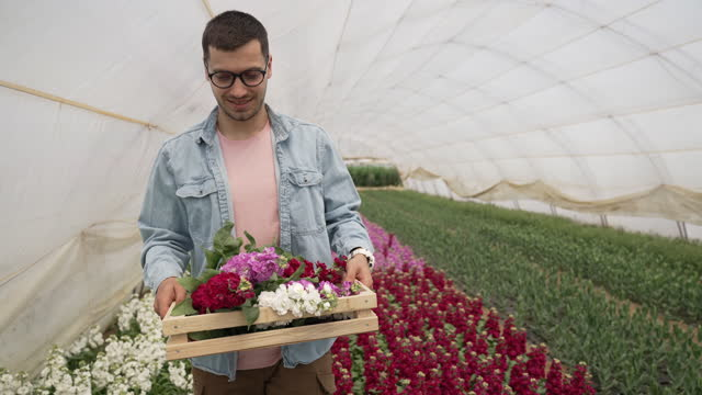 the florist walks and carries a full crate of flowers in greenhouse - gardening glove stock videos & royalty-free footage