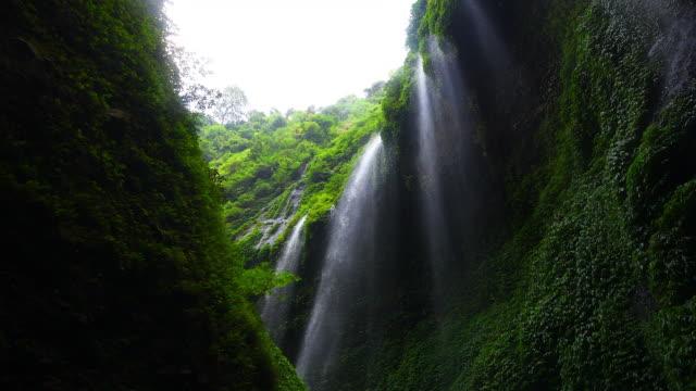 the flowing water motion video from the madakaripura waterfall, probolinggo, indonesia. - probolinggo stock videos & royalty-free footage