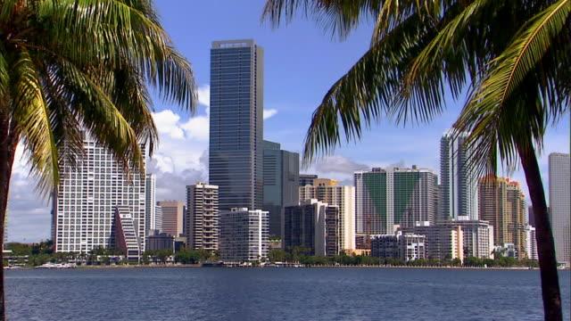 vídeos de stock, filmes e b-roll de the four seasons hotel rises in the miami, florida skyline. - four seasons hotel