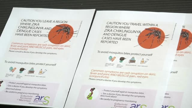 the french caribbean island of martinique has suffered its first zika virus related death according to the regional health agency - french overseas territory stock videos & royalty-free footage
