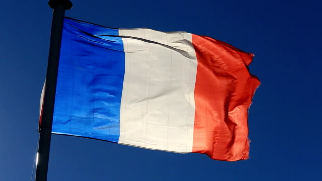 the french flag - french flag stock videos and b-roll footage