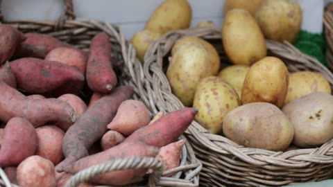 the freshest vegetables - sweet potato stock videos & royalty-free footage