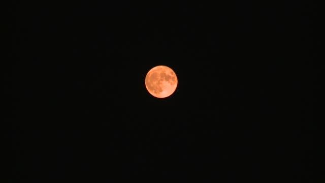 the full autumn moon, red from the wildfire smoke in the sf bay area, moves across the sky. - rymd och astronomi bildbanksvideor och videomaterial från bakom kulisserna
