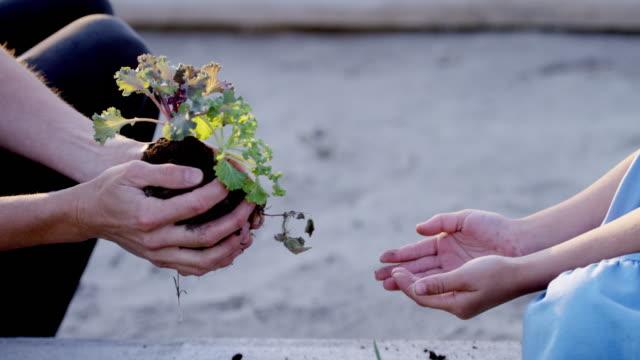 L'avenir dans les mains de l'enfant