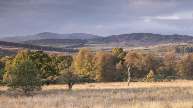 The Galloway Forest Park near Newton Stewart.