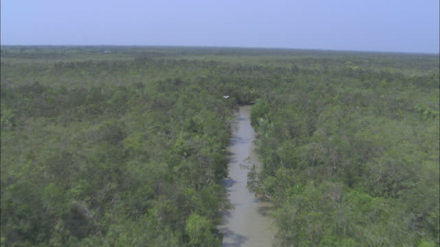 The Ganges River cuts through mangrove forests in Sundarbans Bangladesh. Available in HD.