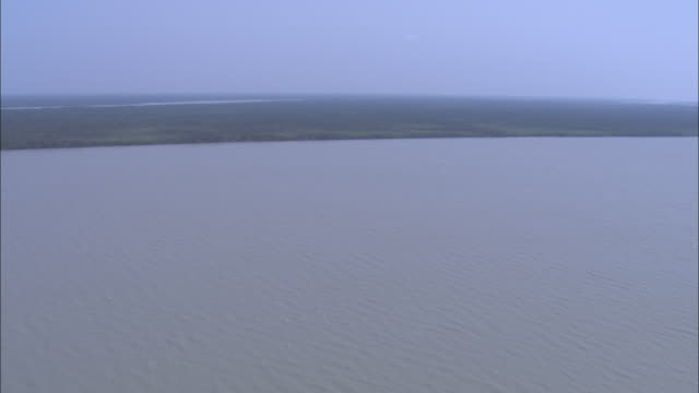 The Ganges River flows through a mangrove forest. Available in HD.