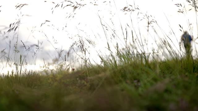 Das Mädchen ist Fuß auf dem Rasen